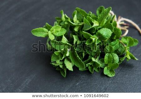 Bunch of fresh mint Stock photo © HASLOO