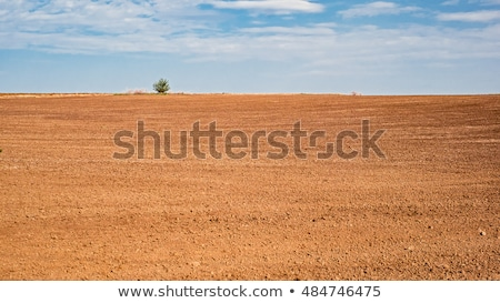 Freshly plowed land from above Stock photo © digoarpi