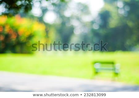Resumen Blur jardín stock foto primavera Foto stock © punsayaporn