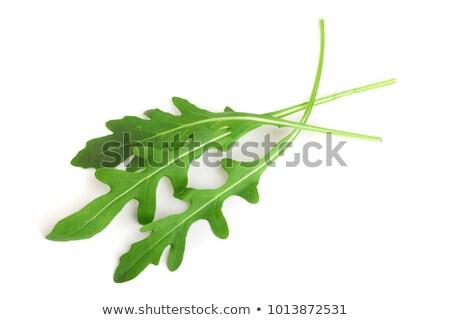 Arugula leaves, rucola Stock photo © yelenayemchuk