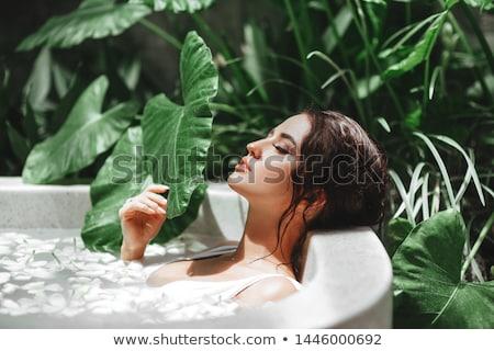 estância · termal · cena · crisântemo · flores · água · sabão - foto stock © pilgrimego