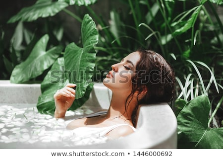 spa · scène · chrysant · bloemen · water · zeep - stockfoto © pilgrimego
