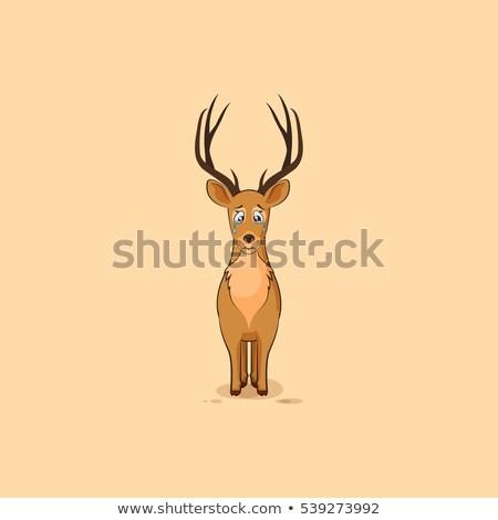 Desenho animado triste veado ilustração pequeno animal Foto stock © cthoman