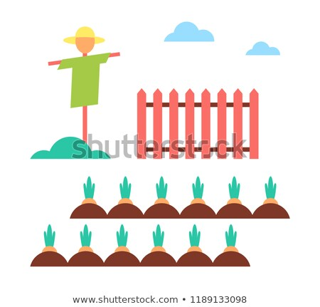 Scarecrow Field Protector Set Vector Illustration Stock photo © robuart