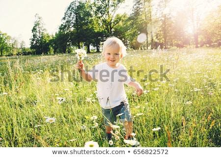 Happy family having fun on daisy field at sunset Stock photo © Lopolo