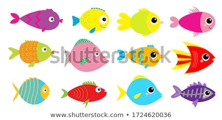 Fish cartoon concept icons Stock photo © netkov1