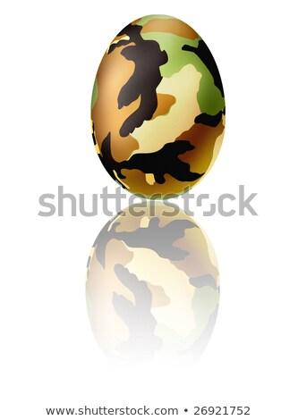 Foto stock: Militar · ovos · de · páscoa · digital · conjunto · floresta
