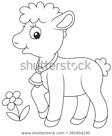 Animale contorno piccolo agnello illustrazione natura Foto d'archivio © colematt