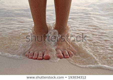 homokos · láb · móló · trópusi · türkiz · tenger - stock fotó © vapi