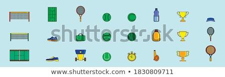 Pista de tenis neto icono vector ilustración Foto stock © pikepicture