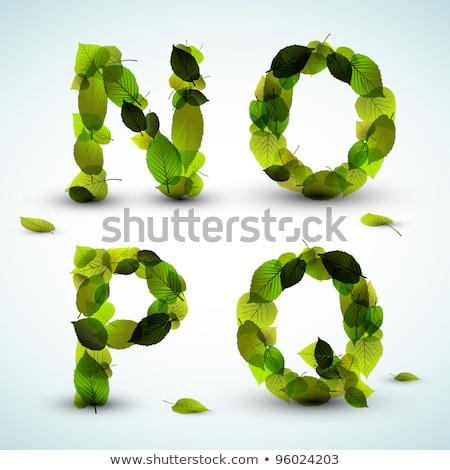Vector alfabet brieven vers groene bloemen Stockfoto © orson
