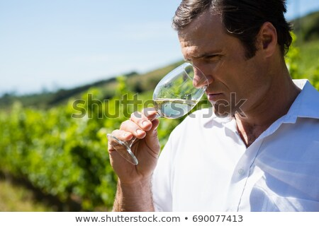 Winegrower observing Stock photo © photography33
