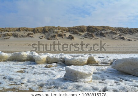 Tenger jég part északi Németország tél Stock fotó © IngaNielsen