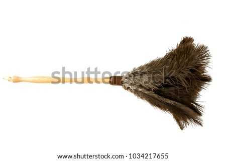 Duster Stock photo © zzve