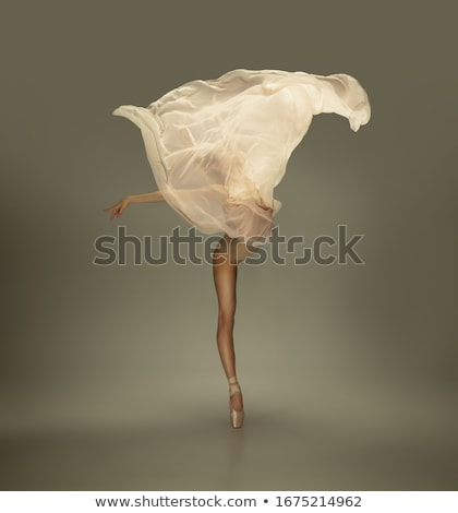 Ballerina grace Stock photo © blanaru