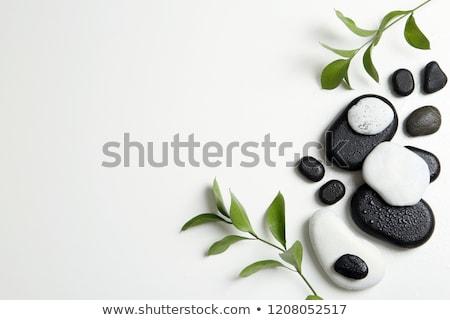 Zen bamboe zwarte stenen blad schoonheid Stockfoto © tilo
