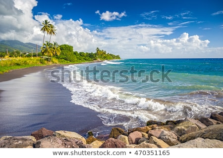 Saint Kitts and Nevis Stock photo © Istanbul2009