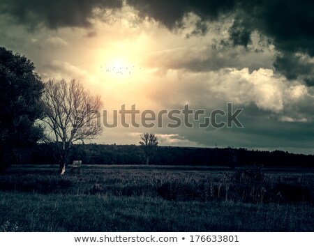 sunset and stormy clouds over fields and hills stock photo © bubutu