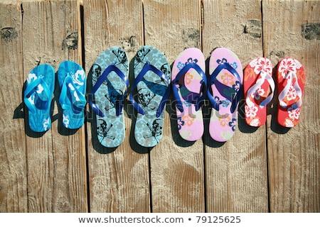Kapcie rodziny plaży ilustracja piasku powłoki Zdjęcia stock © adrenalina