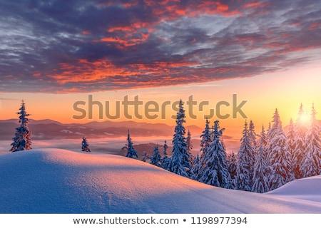 Tél naplemente idilli tájkép domb felső Stock fotó © photosebia