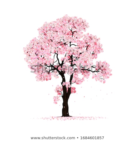 Vektör ağaç sakura doğal düğün ahşap Stok fotoğraf © odina222