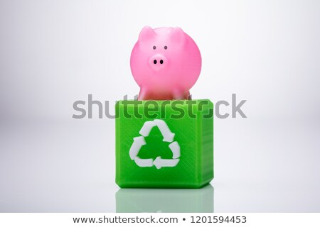 Pink Piggybank Over Cubic Block With Recycle Symbol Stock photo © AndreyPopov