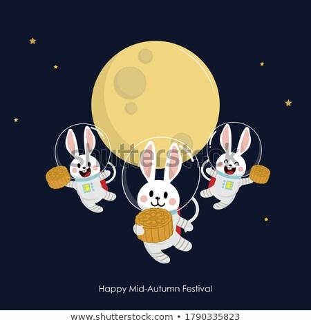 Cartoon улыбаясь астронавт Bunny счастливым Сток-фото © cthoman