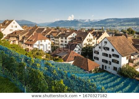 Traditioneel huis Zwitserland detail hemel Stockfoto © boggy