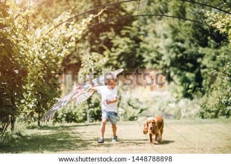 Zdjęcia stock: Mały · chłopca · gry · psów · rodziny · psa