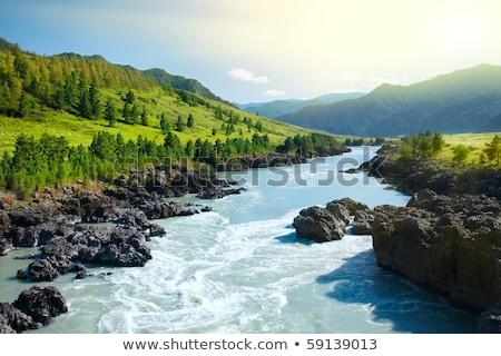 cachoeira · sol · pequeno · rocha · rio · movimento - foto stock © galitskaya