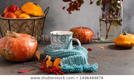 cup of hot chocolate, autumn leaf and warm blanket Stock photo © dolgachov
