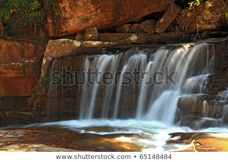 Part Of Waterfall Tadtone In Climate Forest Of Thailand Stok fotoğraf © vichie81