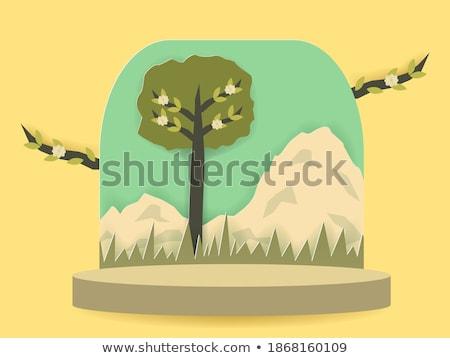 coccinelle · herbe · verte · printemps · herbe · design · jardin - photo stock © adamson