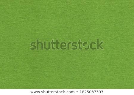 Fiber Paper Texture - Light Grass Green stock photo © eldadcarin