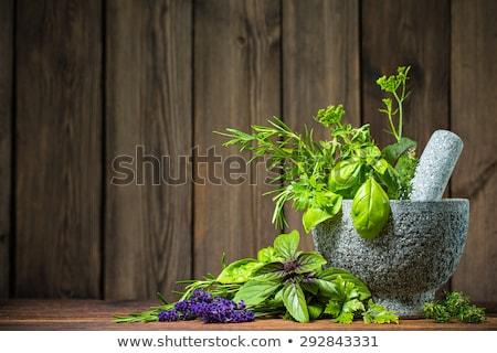 Frescos hierbas mesa de madera alimentos hoja planta Foto stock © Kesu