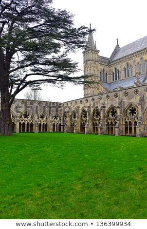 Cloister of Salisbury cathedral Stock photo © Bertl123