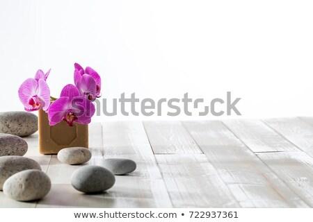 verde · sabão · orquídea - foto stock © taden