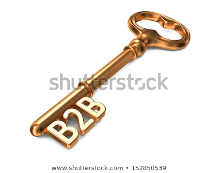 B2b キー 白 3dのレンダリング ビジネス ストックフォト © tashatuvango