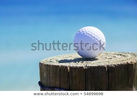 golf ball on the rocks stock photo © leungchopan