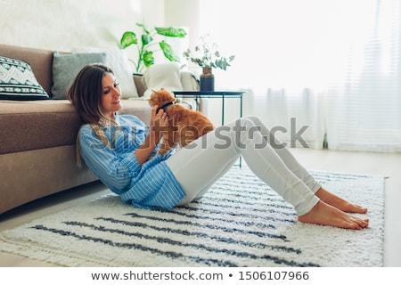 Сток-фото: молодые · кошки · домой · Cute · открытых · рот