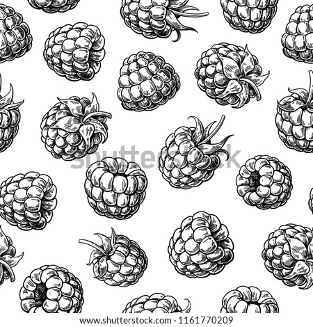 vintage blackberry label on seamless pattern stock photo © conceptcafe