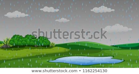 пруд · парка · иллюстрация · воды · здании · пейзаж - Сток-фото © bluering