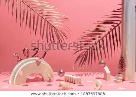 Pálmalevél rózsaszín karton másolat árnyék minta Stock fotó © artjazz