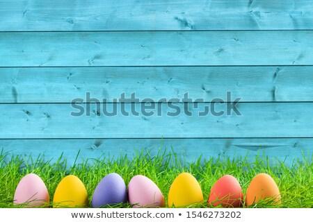 Frango decorado ovo de páscoa branco Páscoa comida Foto stock © bdspn