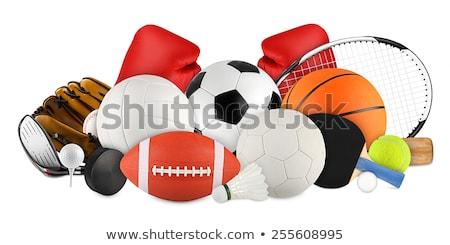 Juegos artículos deportivos aislado establecer ilustración escuela Foto stock © bluering