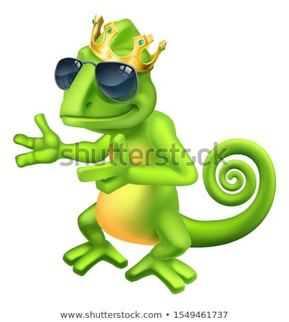 Kameleon cool koning cartoon hagedis karakter Stockfoto © Krisdog