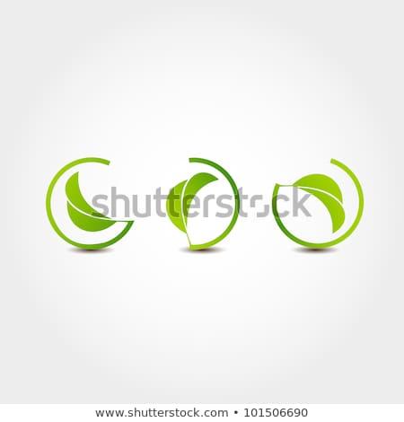 Roślin ikona zielone kółko charakter wiosną Zdjęcia stock © Imaagio