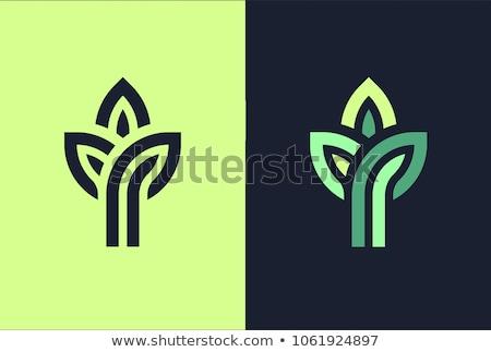 ökológia · ikonok · környezeti · tavasz · természet · levél - stock fotó © cidepix