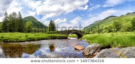 idyllic Loch Lomond Stock photo © prill