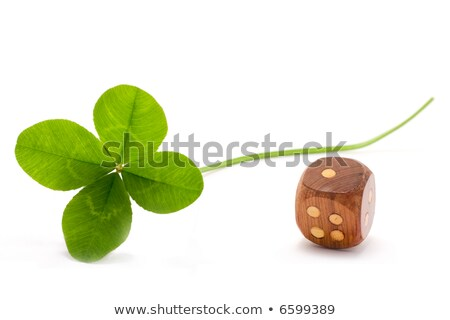 lucky clover and die Stock photo © smithore